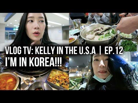 Vlog Diary In Taiwan 2016 #4   我在韓國啦!!!!!