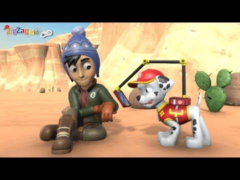 Paw Patrol On A Roll   Helping Injured Jake   Episode 8   Patrulha Pata   ZigZag Kids HD