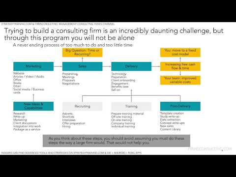 Business Consulting Services: The Business Of Running And Growing A Consulting Firm (Introduction)