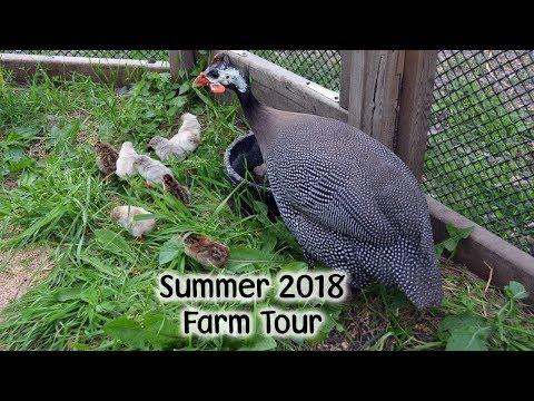 Summer Farm Tour 2018