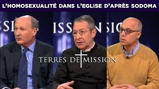 Terres de Mission n°121 : l'homosexualité dans l'Eglise …