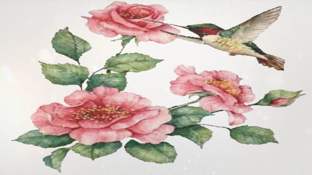 Uma Flor De Bom Dia: Flores Para Você E Sua Familia