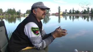 Ловля карпа на фидер с Олегом Осипенко видео   ОДР #2
