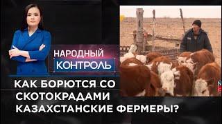 Как борются со скотокрадами казахстанские фермеры?