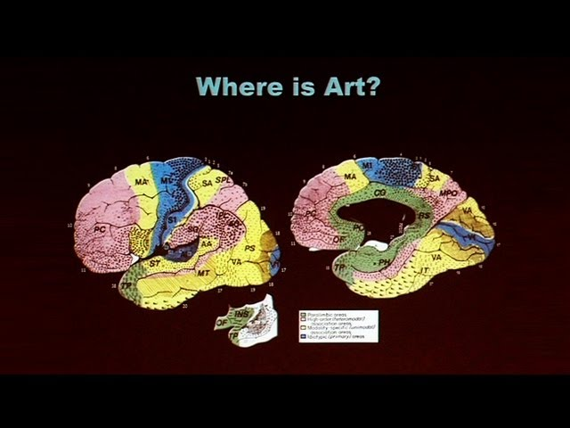 Creative Brains Music Art And Emotion Youtube
