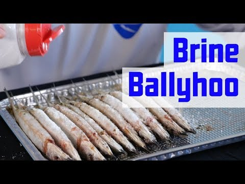 How to Prep Ballyhoo for Offshore Fishing – The Tackle Room