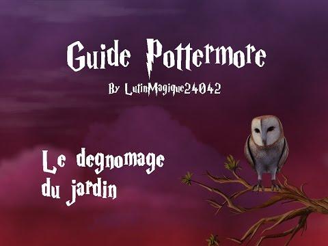 Guide Pottermore // Le dégnomage du...