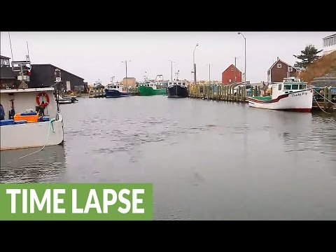 Time Lapse Showcases Dramatic Tide Change Of Hall's Habour In Nova Scotia