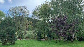 Veselie maxima! formatia Basarabia muzica populara si muzica de petrecere