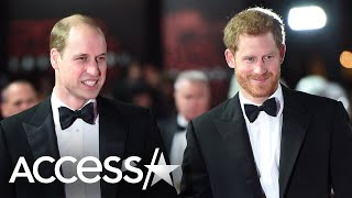 Prince Harry And Prince William Weren't 'On Good Terms' Upon Royal Exit (Report)