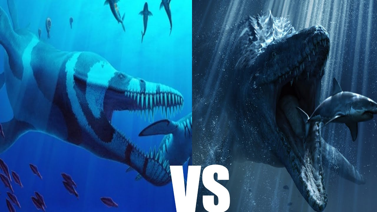 Predator X Vs Mosasaur Who Would Win Youtube