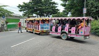 Menghadang Odong Odong Kereta Kelinci Menyebrang Jalan | Kuda Delman Melintas