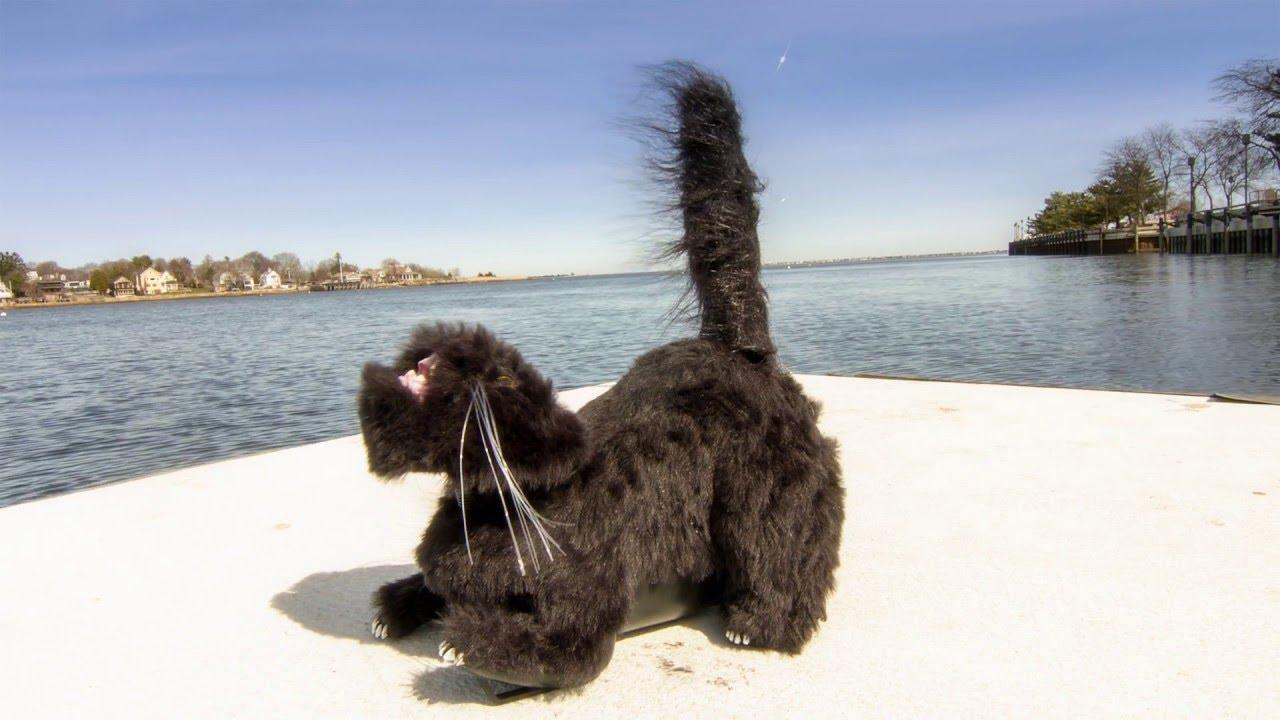 Gull Cat Bird Deterrent Scares Birds Away From Boats, Patios, Balconies