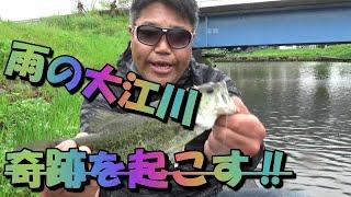 雨の大江川で奇跡はおきる⁉ thumbnail