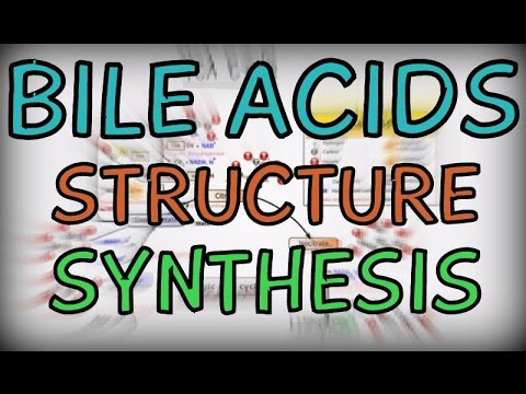Bile Acids - Structure and Synthesis
