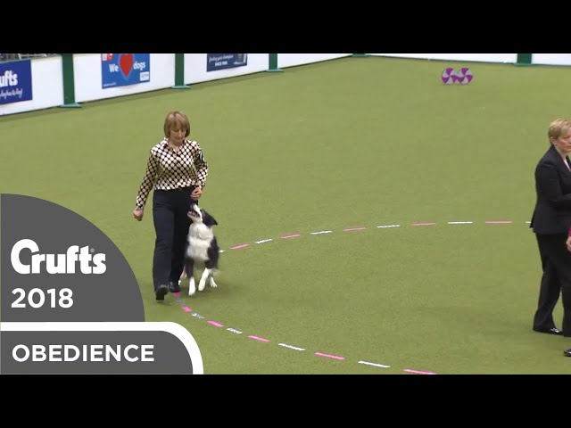 Obedience - Bitch Championship - Part 10 | Crufts 2018