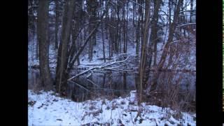 Iron Maiden - Still Life - piano / vocal cover experiment