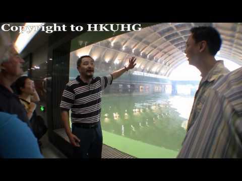 HKUHGroup Trip to Yang Jiang Maritime Silk Road Museum Nan Hai No.1 Wreck