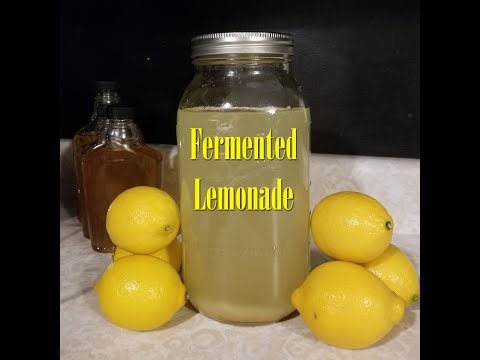 Fermented Lemonade ~Delicious ~ Nutritious ~ Probiotic Goodness