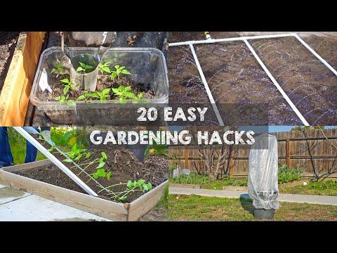 20 Gardening Hacks to Must Know When Starting Gardening