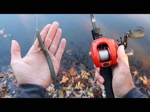 Catch MORE Bass This WINTER (Bass Fishing Tips)