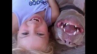 животные и дети красивые прикольные фото