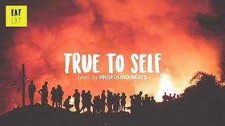 (free) 90s old school boom bap hip hop instrumental   'True to Self' prod. by PROFOUND BEATS