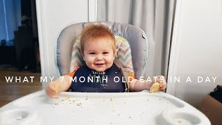 What My 7 Month Old Eats in A Day | The new mom diaries