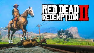 RED DEAD REDEMPTION 2 FUNNY MOMENTS #11