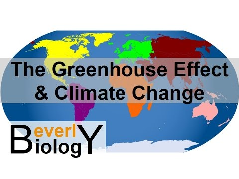 The Greenhouse Effect & Global Warming