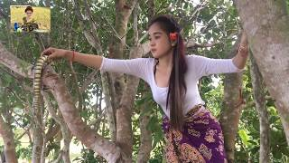 Amazing Brave Girl Catch Big Snake At the road / Village Snake In cambodia