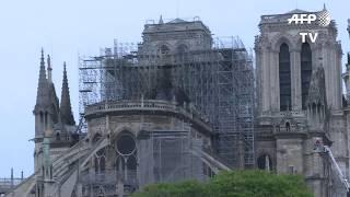 Le jour se lève sur Notre-Dame après l'incendie dévastateur   AFP Images
