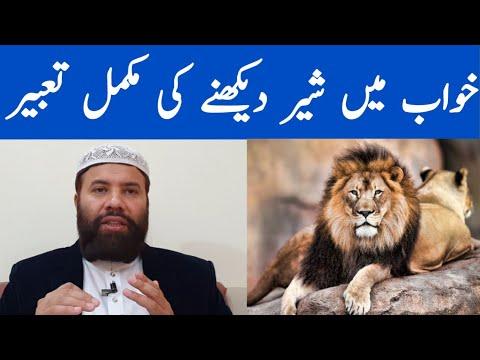 Khwab Mein Sher Dekhna | Khwab Mein Sher Dekhne Ki Tabeer | Lion Dream Interpretation