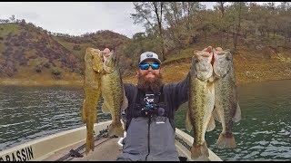 Bass Fishing TRIFECTA Lake Berryessa Early January