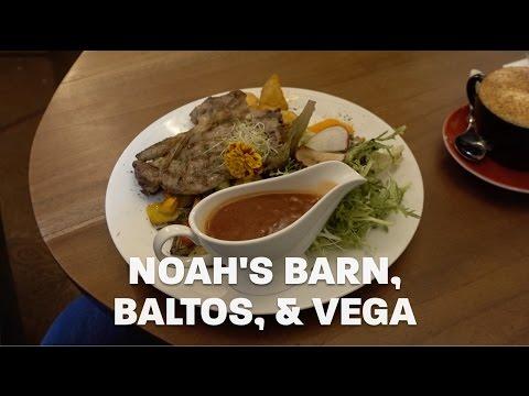 Noah's Barn, Baltos, & Vega | Vlog 03