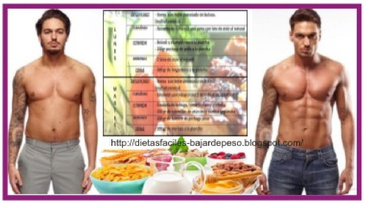 Guía superior de Tipos de metabolismo