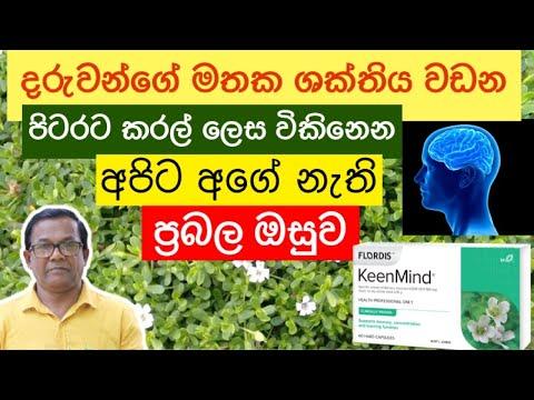 ඉගෙන ගන්න දරුවන්ට දෙන්න හොඳම ඔසුව | Bacopa monnieri | Ceylon Agri | Episode 152
