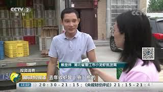 [国际财经报道]投资消费 小龙虾价格走低 行情波动大| CCTV财经