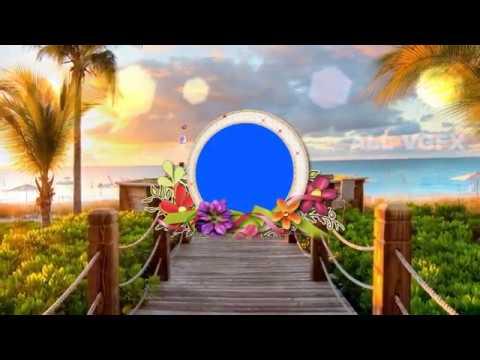 Wedding Background, Free Background,HD Free Wedding Background