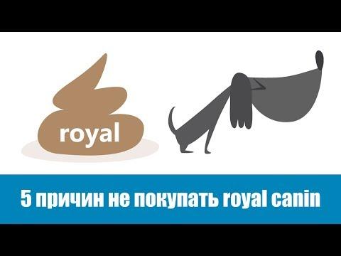 5 причин не покупать Royal Canin
