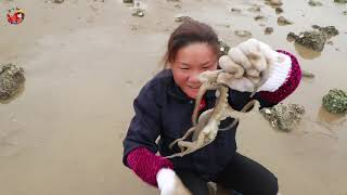 小漁出來趕海,搬開石頭幸運摸到了大八爪魚,把小漁嚇了一大跳 【渔小仙】