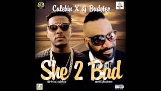 Baixar djbudetee ft calebin in she too bad, new single 2016.
