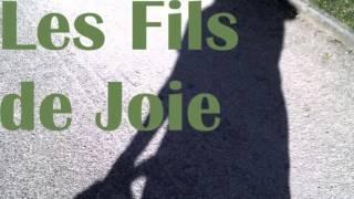LE REQUIN VERT - LES FILS DE JOIE (1982)
