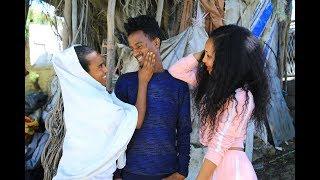 Kemalatkum - Amel - ኣመል -  part 17  New Ethiopian tigrigna comedy  (full) 2019