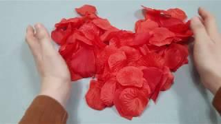 플라워샤워 레드장미꽃잎 꽃가루 꽃길 프로포즈용품