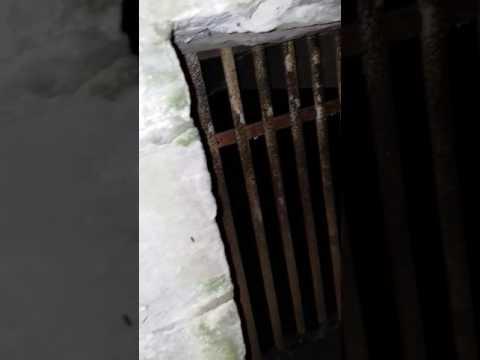 H.P.R. Investigation # 1     (Paranormal Investigating)