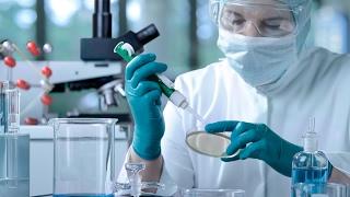 خبراء يحذرون مرضى السكري: زراعة «الجذعية» تجارب علی البشر