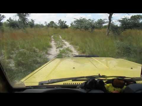 MVI 4364   Gek momentje met de 4 jaargetijden in Mudumu NP