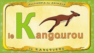Multipédia des animaux.  La lettre K - le Kangourou