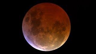 Oglądamy krwawy Księżyc?..No cóż próbowałem